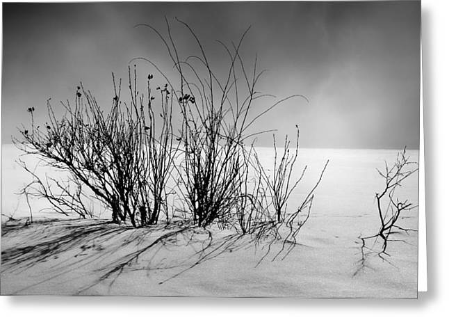 Lanscape Greeting Cards - Still Chilled  Greeting Card by Jerry Cordeiro