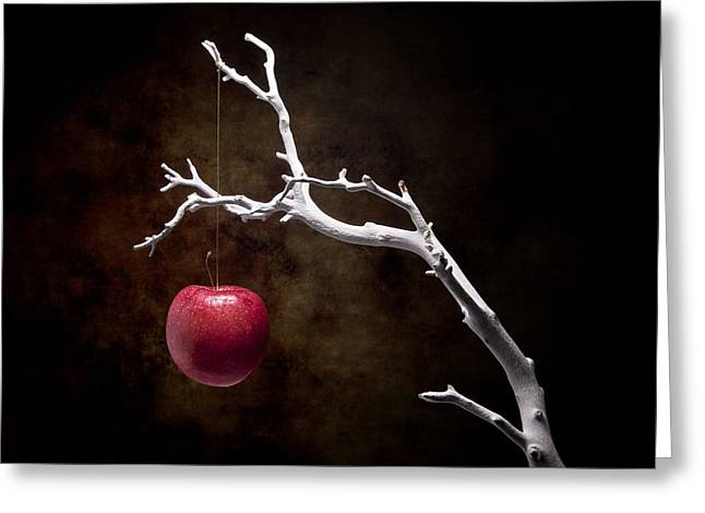 Still Life Apple Tree Greeting Card by Tom Mc Nemar