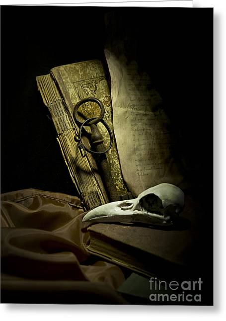 Information Age Photographs Greeting Cards - Still life with a bird skull Greeting Card by Jaroslaw Blaminsky