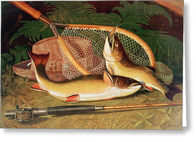 Angling Photographs Greeting Cards - Still Life With A Salmon Trout, A Rod And A Net Greeting Card by Thomas Sedgwick Steele