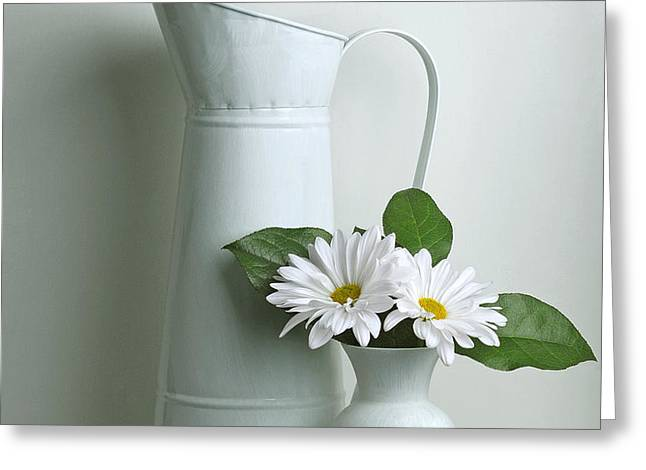 Still Life with Daisy Flowers Greeting Card by Krasimir Tolev