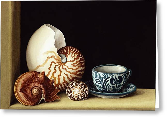 Colored Shell Greeting Cards - Still Life With Nautilus Greeting Card by Jenny Barron
