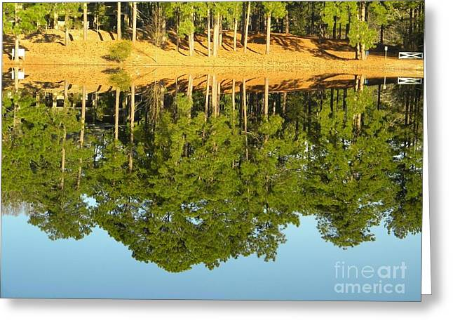 Window Of Life Greeting Cards - Still Reflections Greeting Card by Matthew Seufer