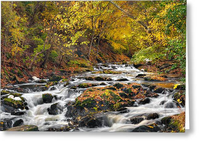 New England Landscape Greeting Cards - Still River Rapids Greeting Card by Bill  Wakeley