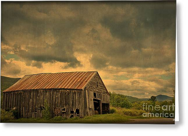 Rural Maine Roads Greeting Cards - Still Standing Greeting Card by Alana Ranney