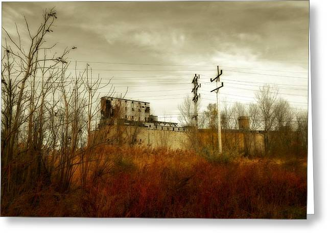 Autumn Scenes Digital Art Greeting Cards - Still Standing Greeting Card by Gothicolors Donna Snyder