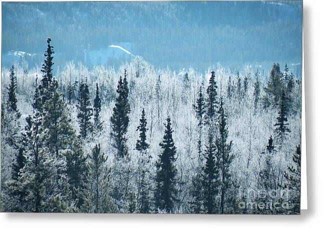 Ice Greeting Cards - Still valley  Greeting Card by Brian Boyle