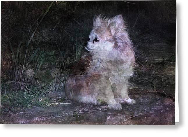 Puppy Digital Art Greeting Cards - Still With Me Greeting Card by Dorothy Berry-Lound