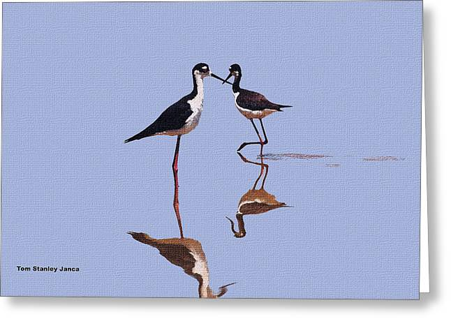 Stilts In The Blue Greeting Card by Tom Janca