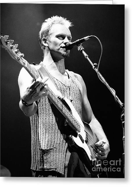 Guitar Stings Greeting Cards - Sting-GP29 Greeting Card by Timothy Bischoff