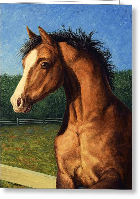 Contemporary Equine Greeting Cards - Stir Crazy Greeting Card by James W Johnson