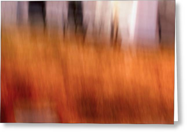 Colorful Photos Greeting Cards - Stirrings - Abstract Art Greeting Card by Laria Saunders