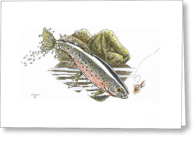 Rainbow Trout Drawings Greeting Cards - St.Joe Cuttroat Greeting Card by Kenneth or Susan Posselt