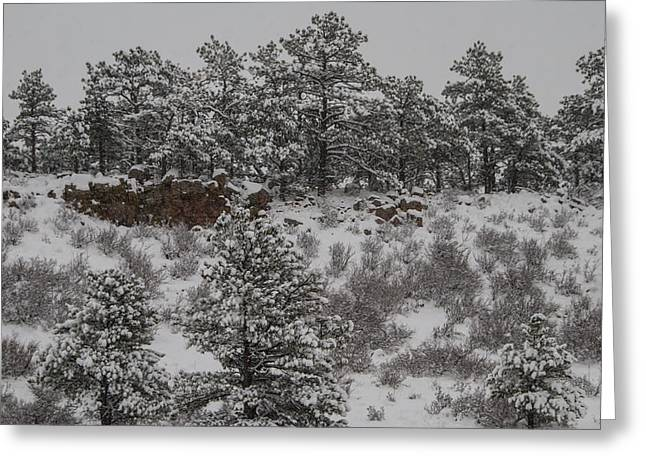 Stockpiled Warmth Greeting Card by Harry Strharsky