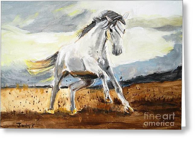Horse Herd Greeting Cards - Stomping Ground Greeting Card by Judy Kay