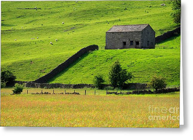 Dry Stone Wall. Greeting Cards - Stone barn and wildlfower meadow in Swaledale Greeting Card by Louise Heusinkveld