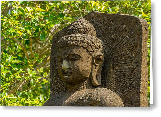 Religiious Greeting Cards - Stone Buddha Amongst Green Leaves Greeting Card by Paul Donohoe