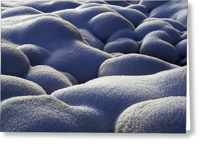 Stone Cold Greeting Card by Michael Van Beber