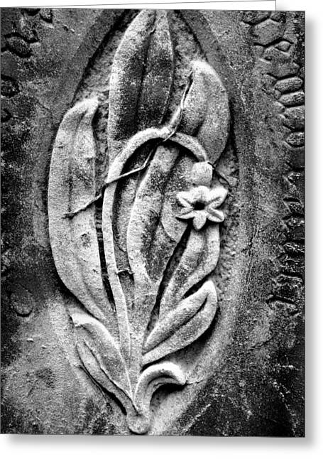 Carved Leaves And Flowers Greeting Cards - Stone Daffodil Greeting Card by Brainwave Pictures