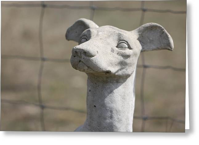 Guard Dog Greeting Cards - Stone Dog - On Guard Greeting Card by Terry Fleckney