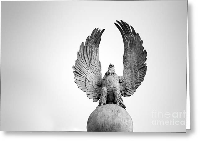 Stones Photographs Greeting Cards - Stone Eagle Greeting Card by Tony Cordoza