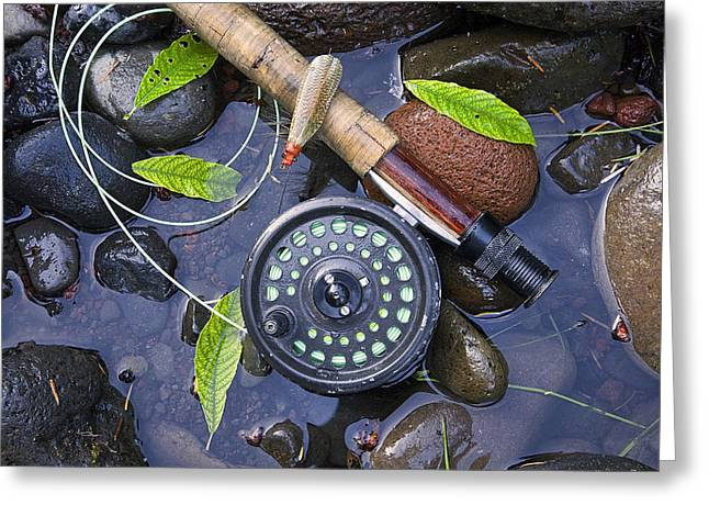 Brown Trout Greeting Cards - Stone Fly Hatch Greeting Card by Buddy Mays