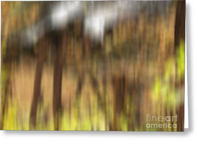 Autum Abstract Greeting Cards - Stone Footbridge Greeting Card by Ed Churchill