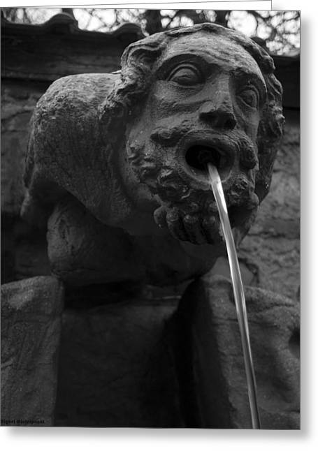 Deutschland Greeting Cards - Stone Fountain Greeting Card by Miguel Winterpacht