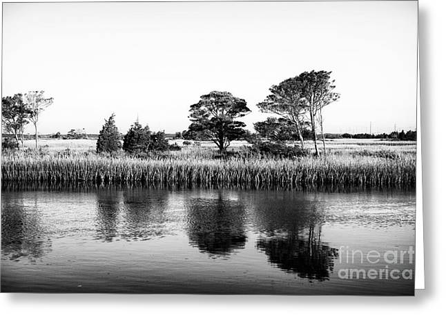 Stones In Water Greeting Cards - Stone Harbor Reflections Greeting Card by John Rizzuto