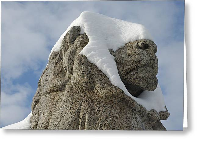 Statue Portrait Photographs Greeting Cards - Stone lion covered with snow Greeting Card by Matthias Hauser