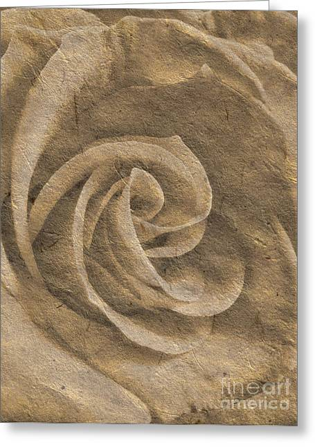 Watermark Greeting Cards - Stone Rose Greeting Card by Jose Elias - Sofia Pereira