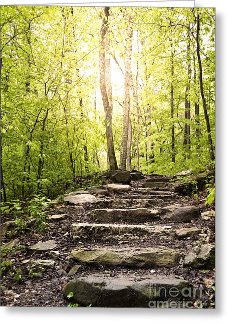 Stone Steps Along A Wooded Arkansas Hiking Trail. Greeting Card by Brandon Alms
