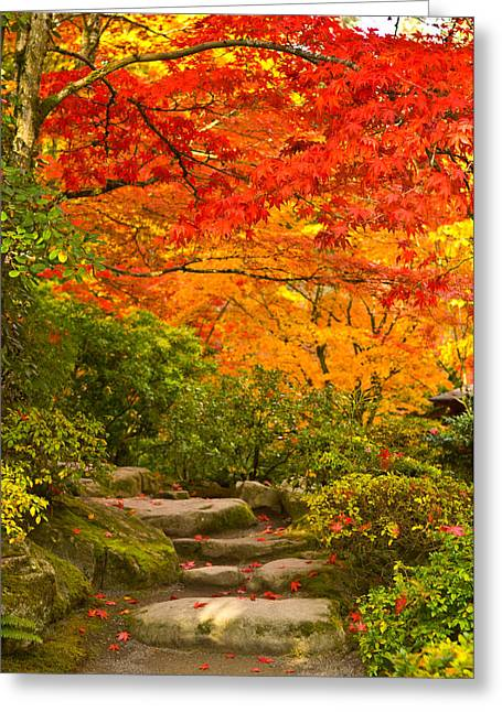 Change The Destination Greeting Cards - Stone Steps In A Forest In Autumn Greeting Card by Panoramic Images