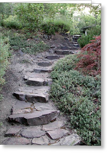 Stepping Stones Greeting Cards - Stone Steps Greeting Card by J. Christopher Briscoe
