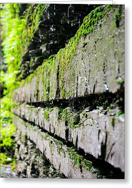 Buttermilk Falls Greeting Cards - Stone Wall - Buttermilk Falls State Park Greeting Card by John Baumgartner