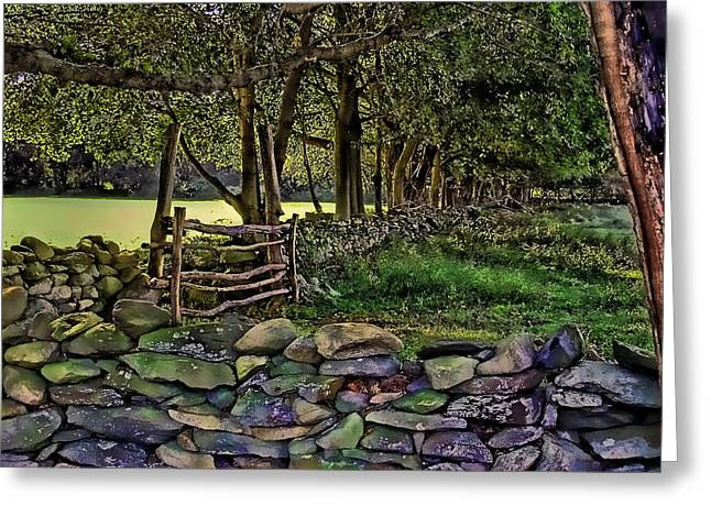 Stone Walled Greeting Card by Tom Prendergast