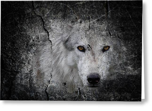 Preditor Greeting Cards - Stone Wolf Graffiti Greeting Card by Steve McKinzie