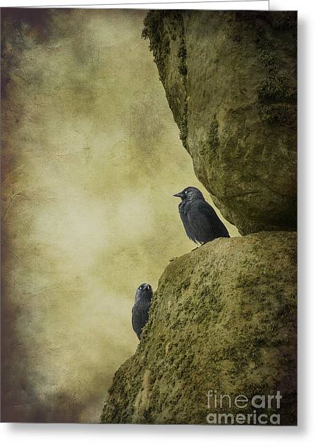 Monolith Greeting Cards - Stonehenge Birds Greeting Card by Clare Bambers