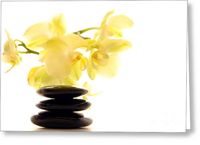 Stones And Orchid Greeting Card by Olivier Le Queinec