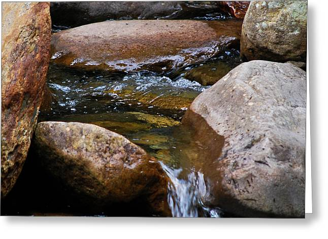 Creekbed Greeting Cards - Stones Flow Greeting Card by Christi Kraft