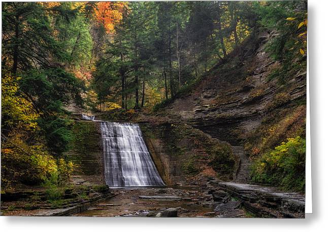 Rivers In The Fall Greeting Cards - Stony Brook Park Greeting Card by Mark Papke