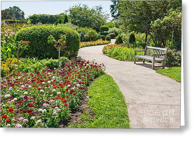 Enjoying Greeting Cards - Stop and Smell the Roses Greeting Card by Jamie Pham