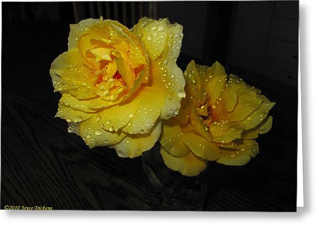Numbers Plus Photography Greeting Cards - Stop And Smell The Roses Greeting Card by Joyce Dickens