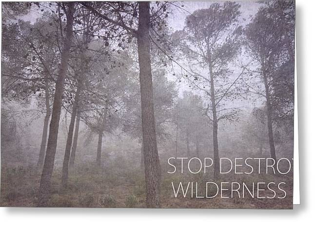 Deforestation Greeting Cards - Stop Destroying Forest Wilderness Area Greeting Card by Guido Montanes Castillo