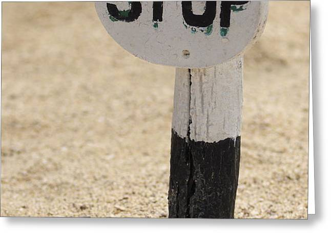 Stop sign on sand Greeting Card by Sami Sarkis