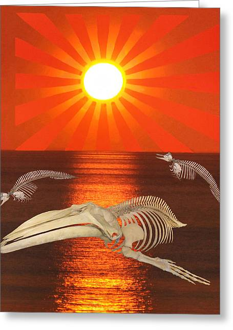 Save The Whales Greeting Cards - Stop The Slaughter Greeting Card by Eric Kempson
