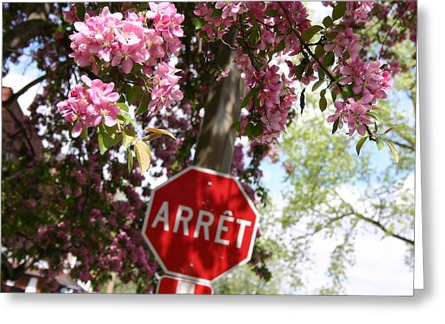 Stop to smell the flowers Greeting Card by Frederico Borges