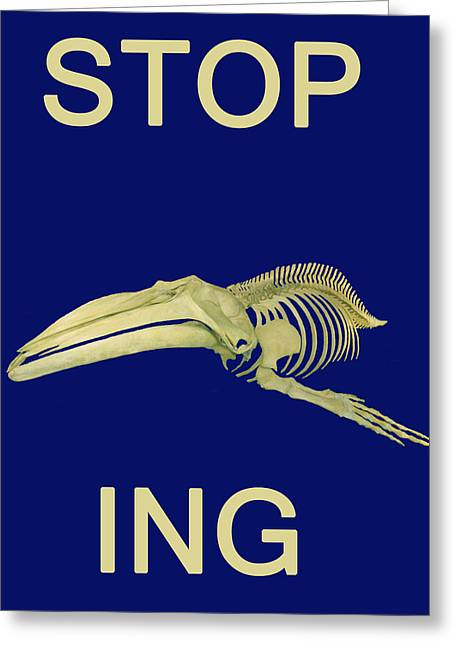 Save The Whales Greeting Cards - STOP Whaling  Greeting Card by Eric Kempson