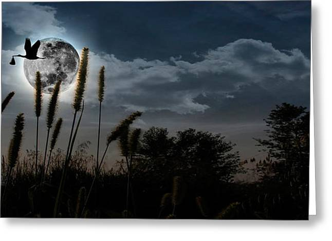 Anticipation Photographs Greeting Cards - Stork With A Baby Flying Over Moon Greeting Card by Panoramic Images