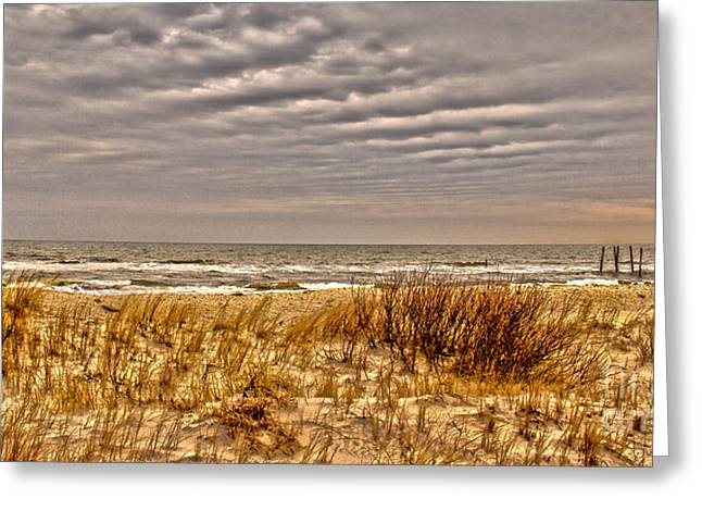 Panoramic Ocean Greeting Cards - Storm Approaching The Shore Greeting Card by Tom Gari Gallery-Three-Photography